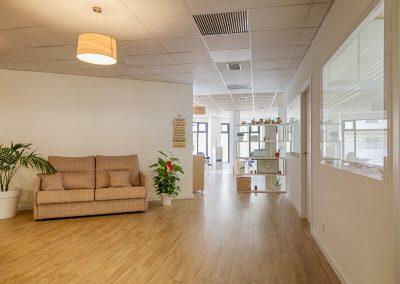 Sala de espera quiropráctica Valencia